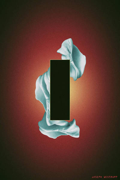 Photograph - Organon - Surreal Abstract Rectangle On Seashell by Joseph Westrupp