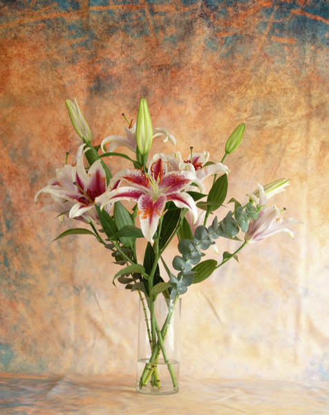 Photograph - Oriental Lily Bouquet by Jennifer Wick
