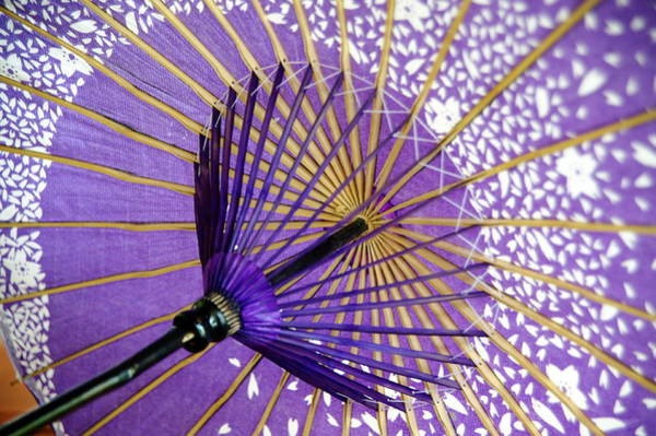 Nara Wall Art - Photograph - Oriental Umbrella by Paulomagoo