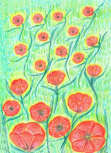 Drawing - Ornamental Poppies by Irina Dobrotsvet