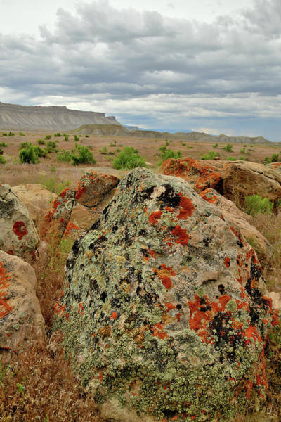 Photograph - Ornate Book Cliff Boulders by Ray Mathis
