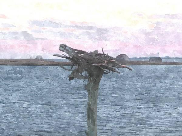 Empty Nest Wall Art - Photograph - Osprey Empty Nest 3 by Cathy Lindsey