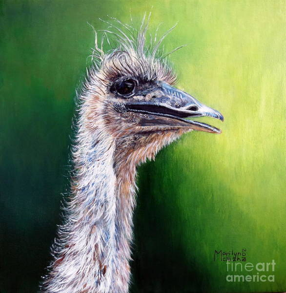 Painting - Ostrich by Marilyn McNish