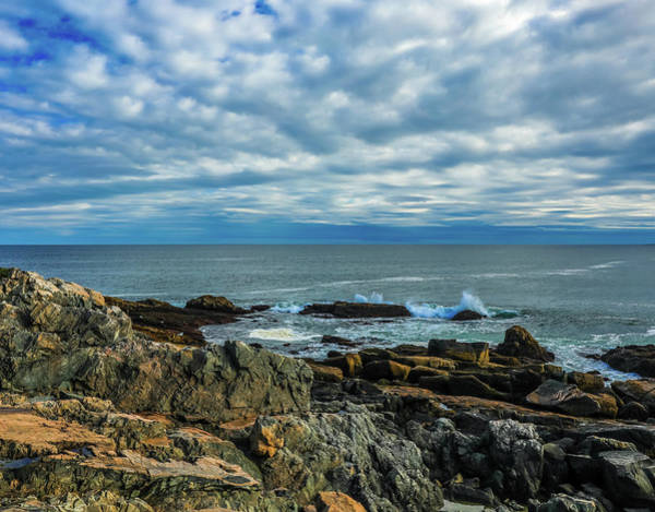 Photograph - Otter Cliffs Acadia by Dan Sproul