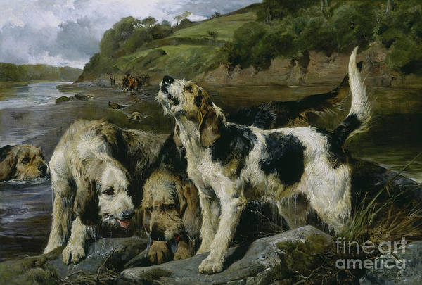 Wall Art - Painting - Otter Hunting, Or On The Scent, 1881 by John Sargent Noble