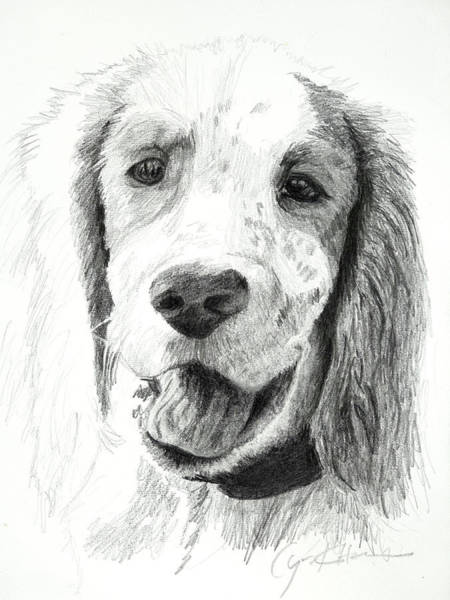 Drawing - Our Dog Named Forest by Lynn Hansen