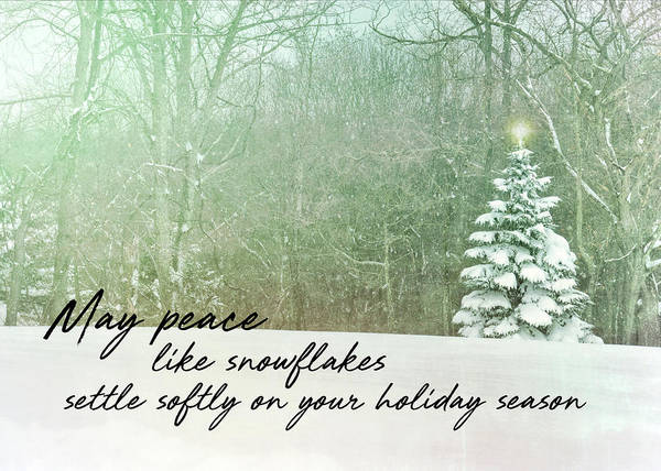 Photograph - Our Little Tree Quote by Jamart Photography