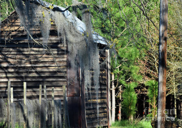 Wall Art - Photograph - Out Behind The Woodshed by Skip Willits