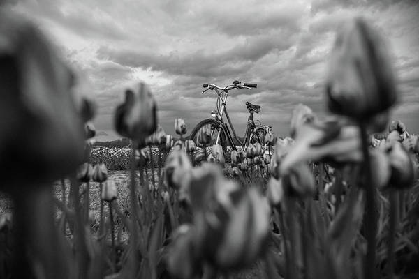 Photograph - Out Pedal The Storm by Kristopher Schoenleber