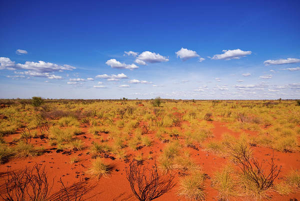 Kings Canyon Photograph - Outback Landscape Showing The Blue Sky by Cuhrig