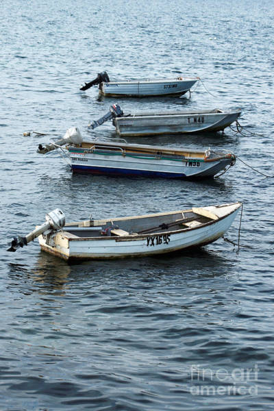 Photograph - Outboard Motors by Stephen Mitchell