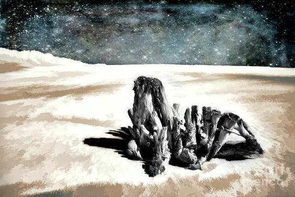Wall Art - Photograph - Outer Banks Beach Beast by Dan Carmichael