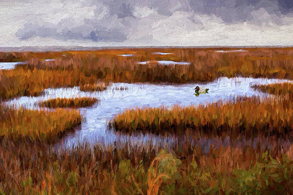 Wall Art - Painting - Outer Banks Cedar Island Wetlands Ap by Dan Carmichael