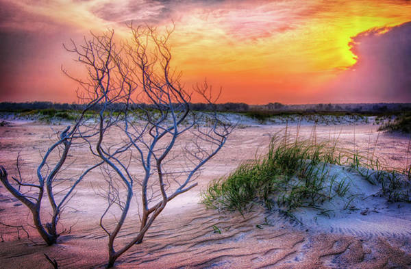 Wall Art - Photograph - Outer Banks Hidden Sunset by Dan Carmichael