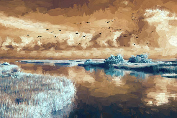 Wall Art - Photograph - Outer Banks Inlet With Birds Fx by Dan Carmichael