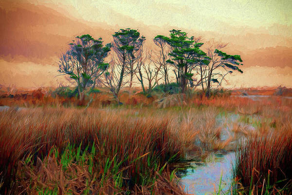 Wall Art - Painting - Outer Banks Marsh Ap by Dan Carmichael