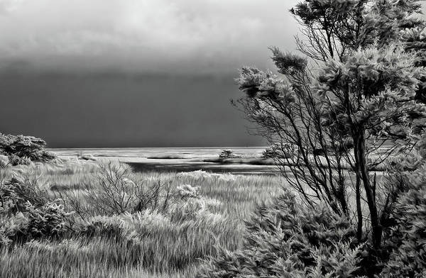 Wall Art - Photograph - Outer Banks Ocean View Bw by Dan Carmichael
