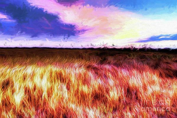 Bodie Painting - Outer Banks Prairie Ap by Dan Carmichael