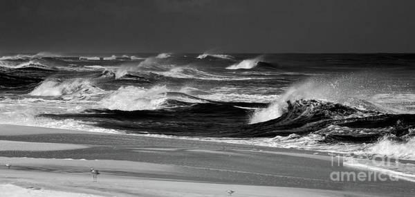 Wall Art - Photograph - Outer Banks Stormy Seas Bw by Dan Carmichael