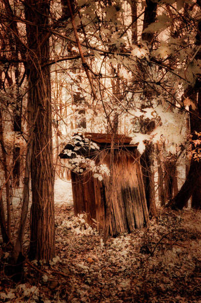 Wall Art - Photograph - Outhouse In The Woods by Paul W Faust - Impressions of Light