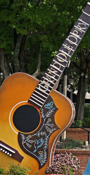 Photograph - Outside Guitar by Charles HALL