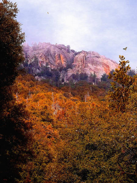 Photograph - Overcast At Suicide Rock - Idyllwild by Glenn McCarthy Art and Photography