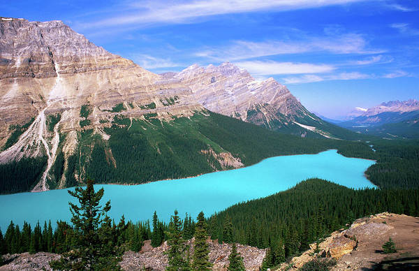 Peyto Lake Wall Art - Photograph - Overhead Of Peyto Lake And Mountains by David  Tomlinson