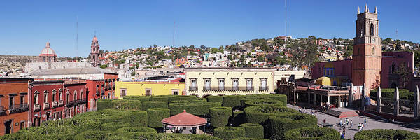 San Miguel De Allende Wall Art - Photograph - Overview Of Pruned Shrubbery, The by Radius Images