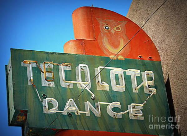 Wall Art - Photograph - Owl Dance by Tru Waters