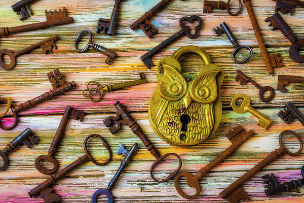Wall Art - Photograph - Owl Lock And Old Keys by Garry Gay