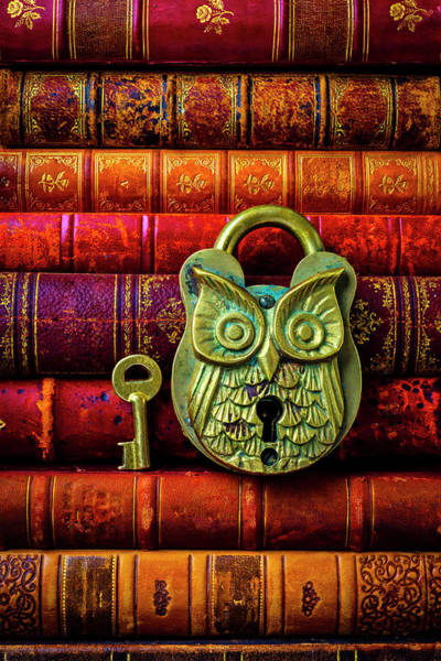 Wall Art - Photograph - Owl Lock On Old Antique Books by Garry Gay