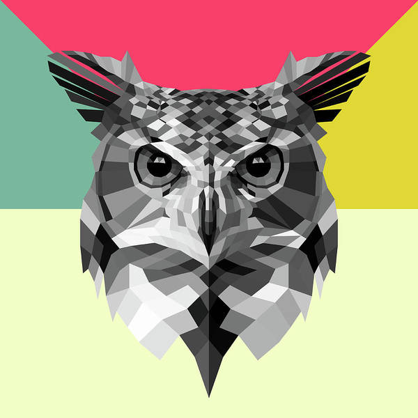 Bobcat Wall Art - Digital Art - Owl by Naxart Studio