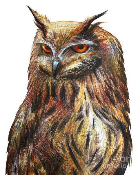 Hunt Digital Art - Owl Portrait Drawing by Viktoriya art