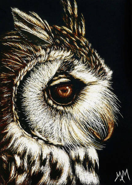 Painting - Owl Portrait by Monique Morin Matson