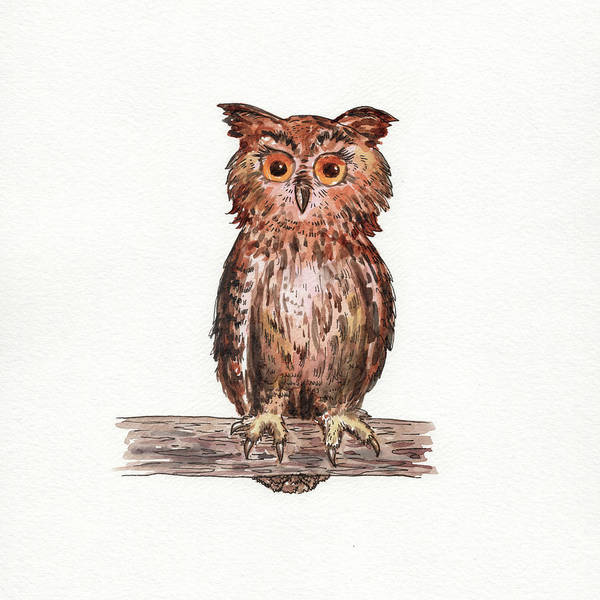Wall Art - Painting - Owl Squared Watercolor by Irina Sztukowski