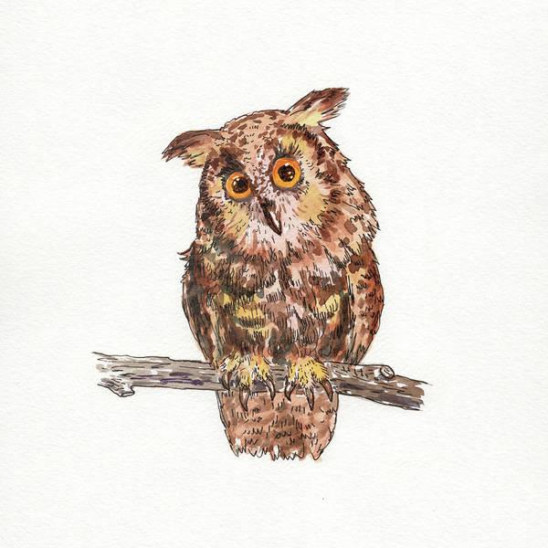 Painting - Owl Squared Watercolour  by Irina Sztukowski