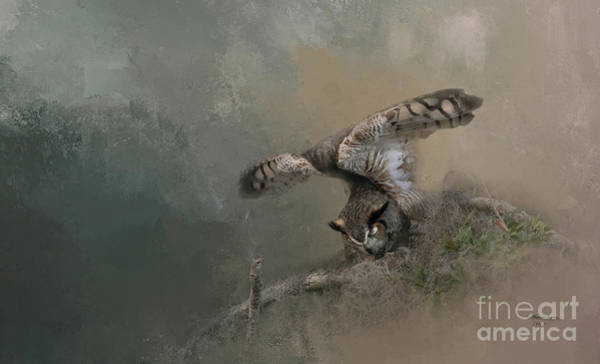 Wall Art - Photograph - Owl Stretch by Marvin Spates