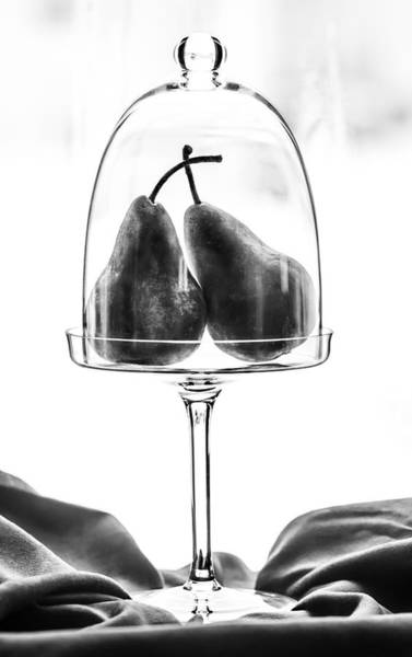Greyscale Photograph - Own Little Bubble by Maggie Terlecki