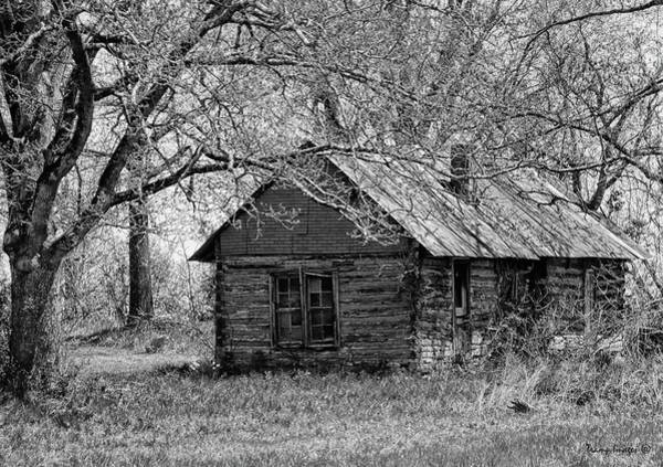 Photograph - Ozark Homestead by Wesley Nesbitt