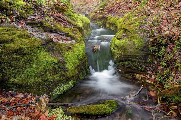 Photograph - Ozark Mountain Stream - Northwest Arkansas by Gregory Ballos
