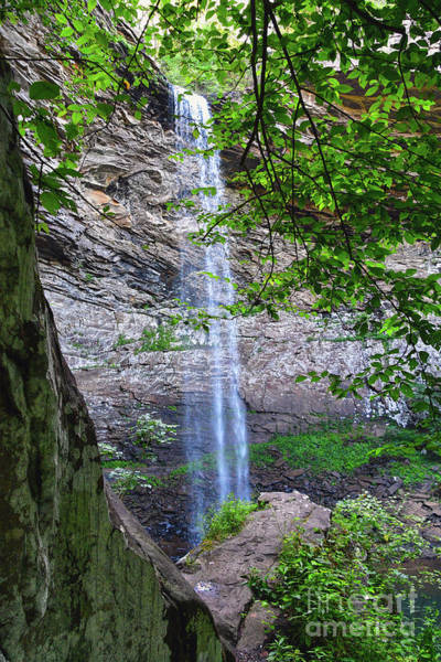 Photograph - Ozone Falls 4 by Phil Perkins
