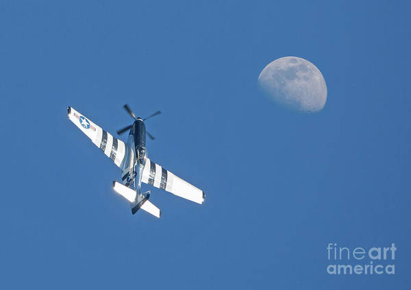 Photograph - P-51 Mustang Fighter In Flight by Kevin McCarthy