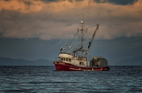Photograph - Pacific Baron by Randy Hall