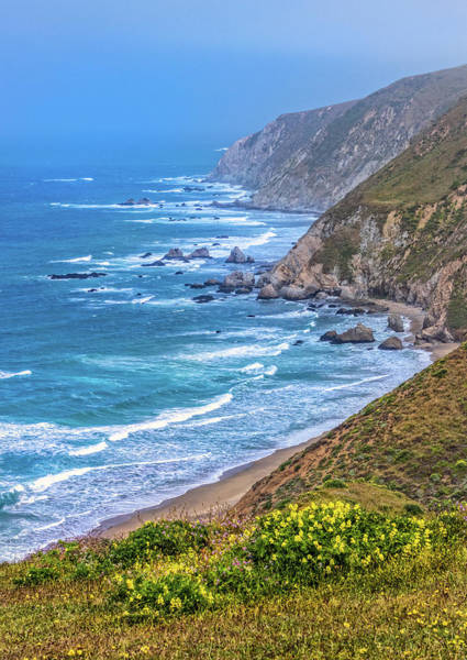 Photograph - Pacific Coast Along The Tomales Point Trail by Carolyn Derstine