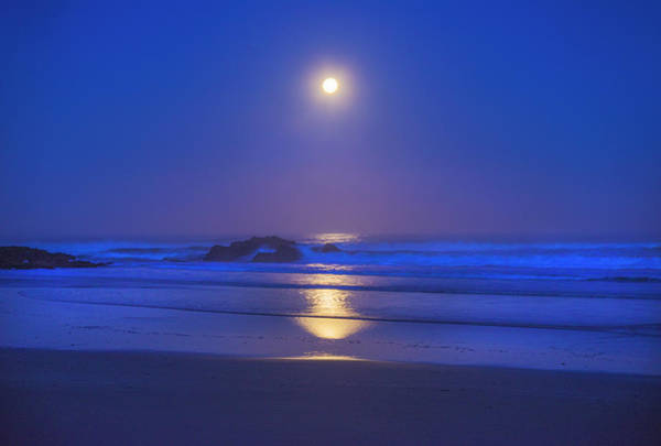 Photograph - Pacific Moon by Jonathan Hansen