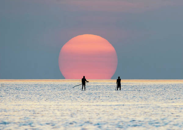 Photograph - Sunrise Paddle Boarding by Steven Sparks