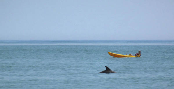 Photograph - Paddle Faster by JAMART Photography