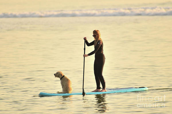 Photograph - Paddleboarding With Her Dog by Keith Morris