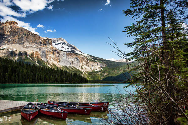 Wall Art - Photograph - Paddles For Emerald Lake by Monte Arnold