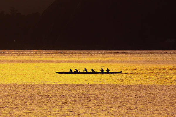 Rowing Wall Art - Photograph - Paddling On Bay by Filipe Cunha